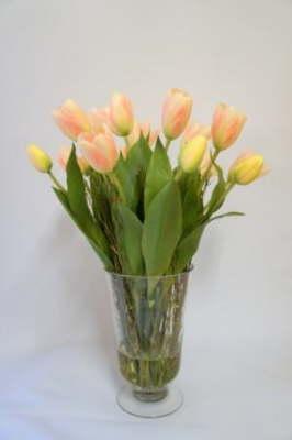 Flower_Illusions_September_2012_0391