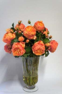db_Flower_Illusions_orange_david_austin_roses