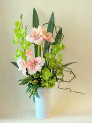 db_amaryllis_and_orchids