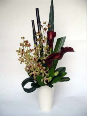 db_orchid_and_arum_lillys