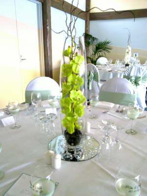 green_phaelenopsis_in_bullet_vase1