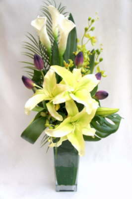 db_Flower_Illusions_green_oriental_and_white_calla
