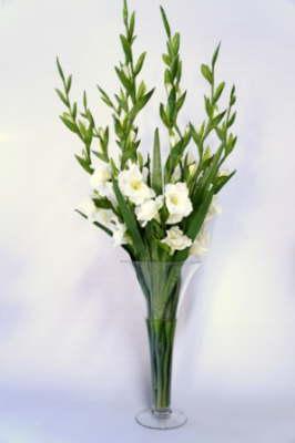 db_Flower_Illusions_white_glady