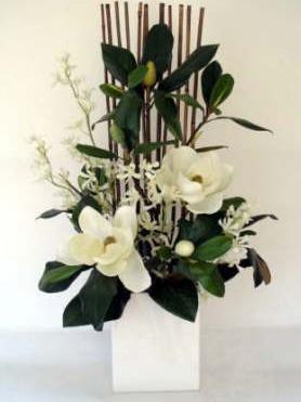 db_magnolia_arr