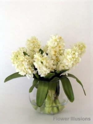 db_white_hyacinth