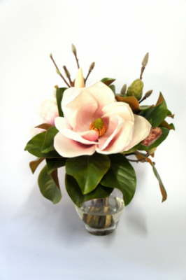 db_Flower_Illusions_pink_magnolia